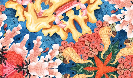 tidig-version-bland-koraller
