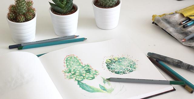 malar-kaktusar-akvarell
